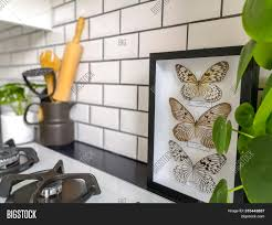 black and white kitchen framed pictures beautiful black white image photo free trial bigstock