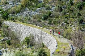 The New Zealand Cycle Trail Official Website The New Ciro Cycle Trail Is A Big U0027open Air Museum U0027