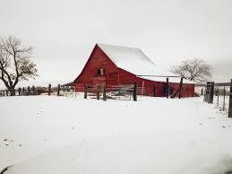 barn wedding venues dfw barn wedding venue dfw longhorns rustic grace estate