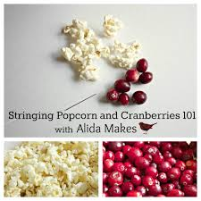 alida makes stringing popcorn and cranberry garland 101 such a