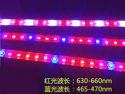 12v dc led grow lights 30pcs lot grow lights l led plant blue red aquarium greenhouse
