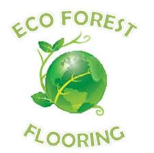 winnipeg hardwood refinishing eco forest flooring repair and design
