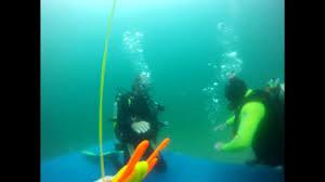 Utah snorkeling images Bear lake scuba diving jpg