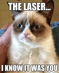 Laser Meme - no cat had fun once quickmeme
