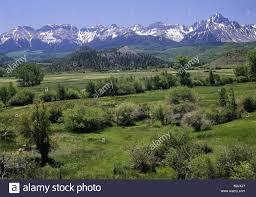 Colorado Vegetaion images Colorado landscapes jpg