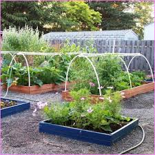 Garden Layout Raised Bed Vegetable Garden Layout Galleries Coexist Decors