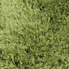 Forest Rug Cascade Forest Rug On Sale Now With Free Delivery Express Rugs