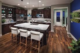 Dark Kitchen Cabinets With Dark Floors Dark Kitchen Cabinets For Beautifying Kitchen Design Gallery