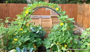 Design A Vegetable Garden Layout Fall Simple Vegetable Garden Ideas Simple Vegetable Garden