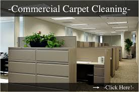 chemfree carpet cleaning carpet upholstery cleaning minneapolis mn