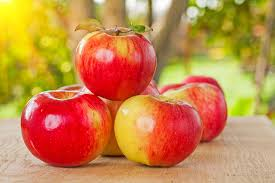 apples chow line