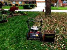 The Only 4 Fall Lawn Care Tips That Matter In Kansas City Mo