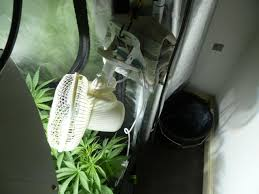 grow room oscillating fans how do you hang your osciallting fans in your grow tent