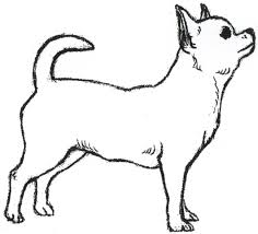 pet clipart simple dog pencil and in color pet clipart simple dog