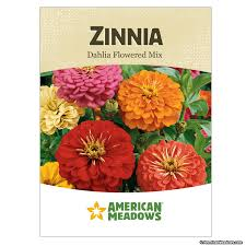 cheap seed packets zinnia seed packet american