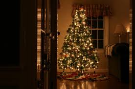 christmas tree house christmas tree in house pete the bug guy