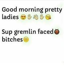 Good Morning Ladies Meme - good morning pretty ladies sup gremlin faced bitches funny meme on