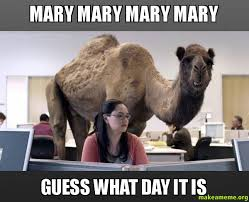 Mary Meme - mary mary mary mary guess what day it is make a meme