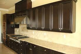Kitchen Cabinet Door Locks Kitchen Cabinet Door Handles Creative Important Black Kitchen