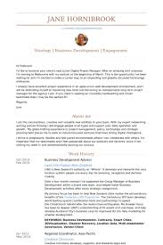 beginning resume business development resume samples visualcv resume samples database