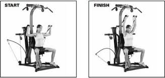 Bowflex 3 1 Bench Best Bowflex Exercises The Complete Guide