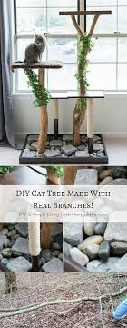 see how i made this diy cat tree using real tree branches for only