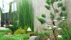 Bamboo Garden Design Ideas Bamboo Garden Design Bamboo Garden Design Ideas Bamboo Garden