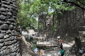 Rock Garden Chandigarh Tickets Chandigarh Drives The Rock Garden And By Heat And