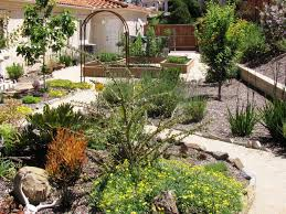 catchy collections of desert landscape plans landscape design