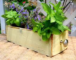 Indoor Window Planter Window Box Herb Garden The Polished Pebble Herb Garden Window Box