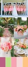 What Color Compliments Pink by Five Popular Shades Of Pink Color Ideas For Your Dream Wedding