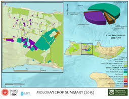 Molokai Map Department Of Agriculture Statewide Agricultural Baseline Project