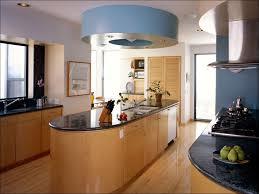 Kosher Kitchen Floor Plan Galley Kitchen Floor Shining Home Design