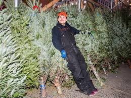 what it s like to sell trees on the streets of new york