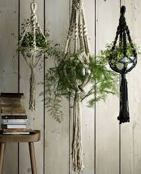 Planter S House Best 25 Indoor Hanging Planters Ideas On Pinterest Hung Vs