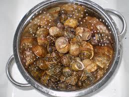 cuisiner les escargots de bourgogne les escargots de bourgogne la cuisine de nat
