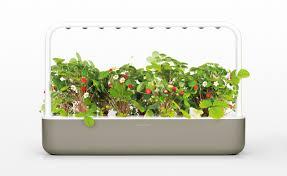 smart garden 9 click u0026 grow