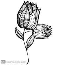 Design Flower Rose Drawing | hand drawn rose flower design hand drawn free vector graphics and