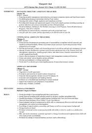 Situation Task Action Result Resume Examples Assistant Treasurer Resume Samples Velvet Jobs