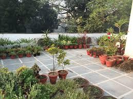 terrace gardening dhara the earth an indian gardening blog my roof top terrace