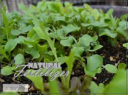 natural fertilizer using the best that nature has to offer