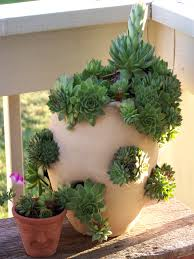 How To Make A Succulent Planter by Planting Hens And In Strawberry Pots Is A Great Idea