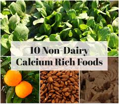 10 non diary calcium rich foods xperiments in living