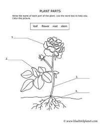 157 best free printable worksheets for kids images on pinterest