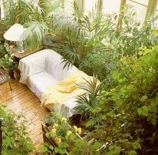 room with plants captive creativity i want a sun room