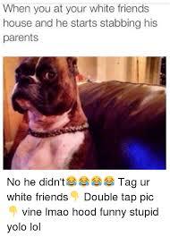 boxer dog vine 25 best memes about redditgift redditgift memes