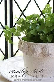 Challenge Flower Pot Scallop Shell Terra Cotta Pot Terra Cotta Pot Challenge