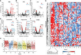 proteomics reveals the effects of sustained weight loss on the download figure