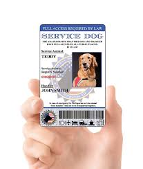 amazon com xpressid holographic service dog id card custom
