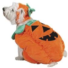 Cute Dog Halloween Costumes 137 Pet Halloween Images Pet Costumes